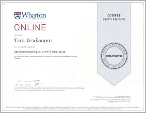 Ein Zertifikat von Toni Großmann für Entrepreneurship 3: Groth Strategies